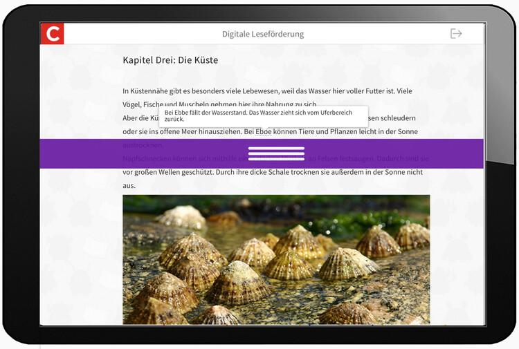 Screenshot Leseförderung auf Tablet